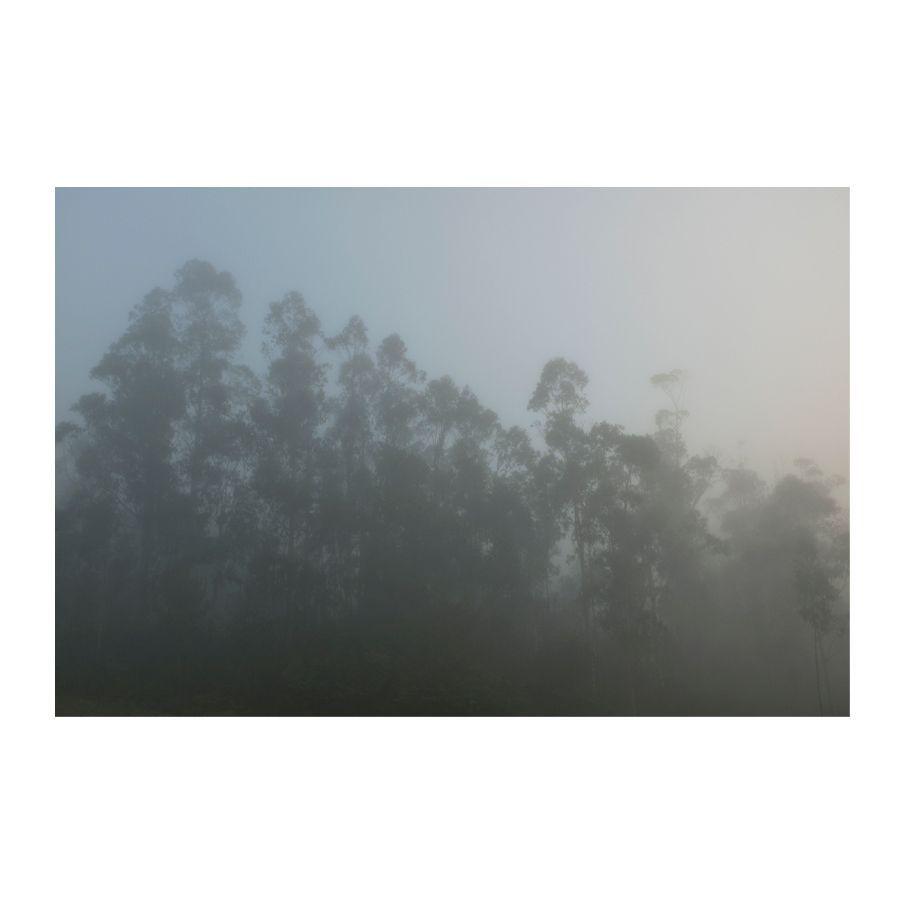 ariadna-silva-01