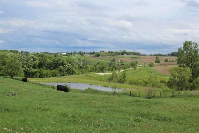 Firefly Creek Ranch