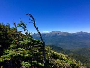 Wildcats new hampshire appalachian trail