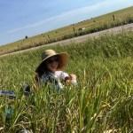 emily chen-newton clay bonnyman evans nebraska
