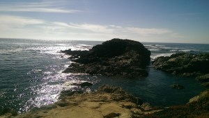 Pacific Coast near San Simeon