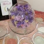 aroma&clay salon 小さな小さな猫の月