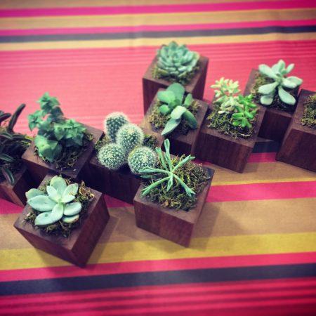 cache-pots en bois