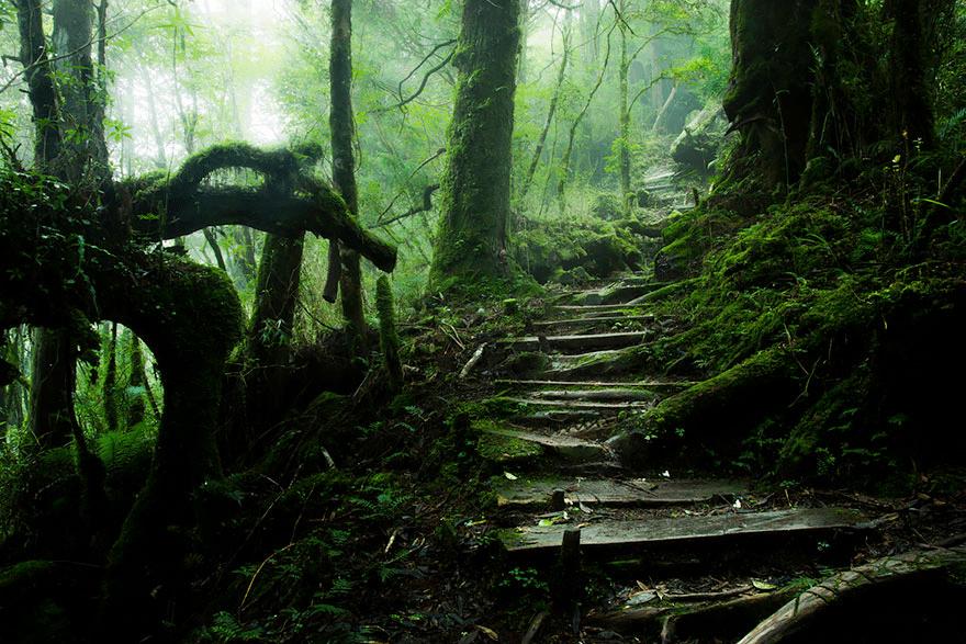 path in Taiwan