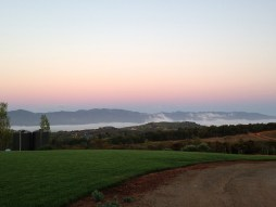 Napa Valley - Pritchard Hioll