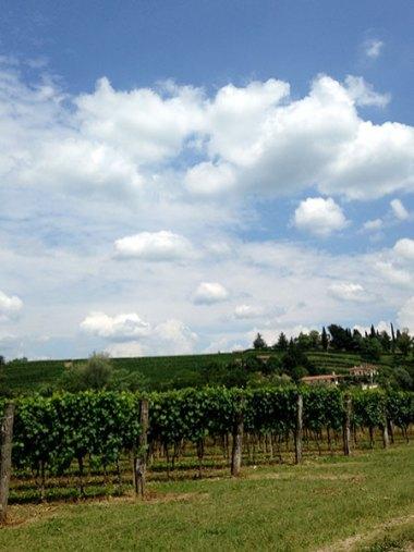 Staycation in Friuli–Venezia-Giulia_01