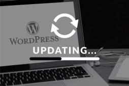 clcreative-wordpress-updates