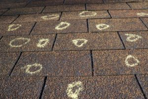 Hail Damage Detected By A Roofing Professional