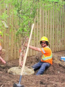 Tree Planting is the focus of Earth Day Canada 2016