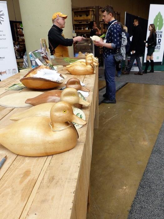 Ontario wood ducks