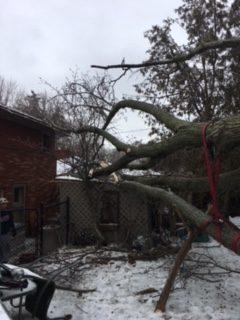 CLC storm response