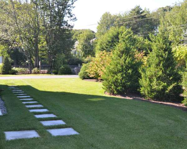 home landscaping in southern
