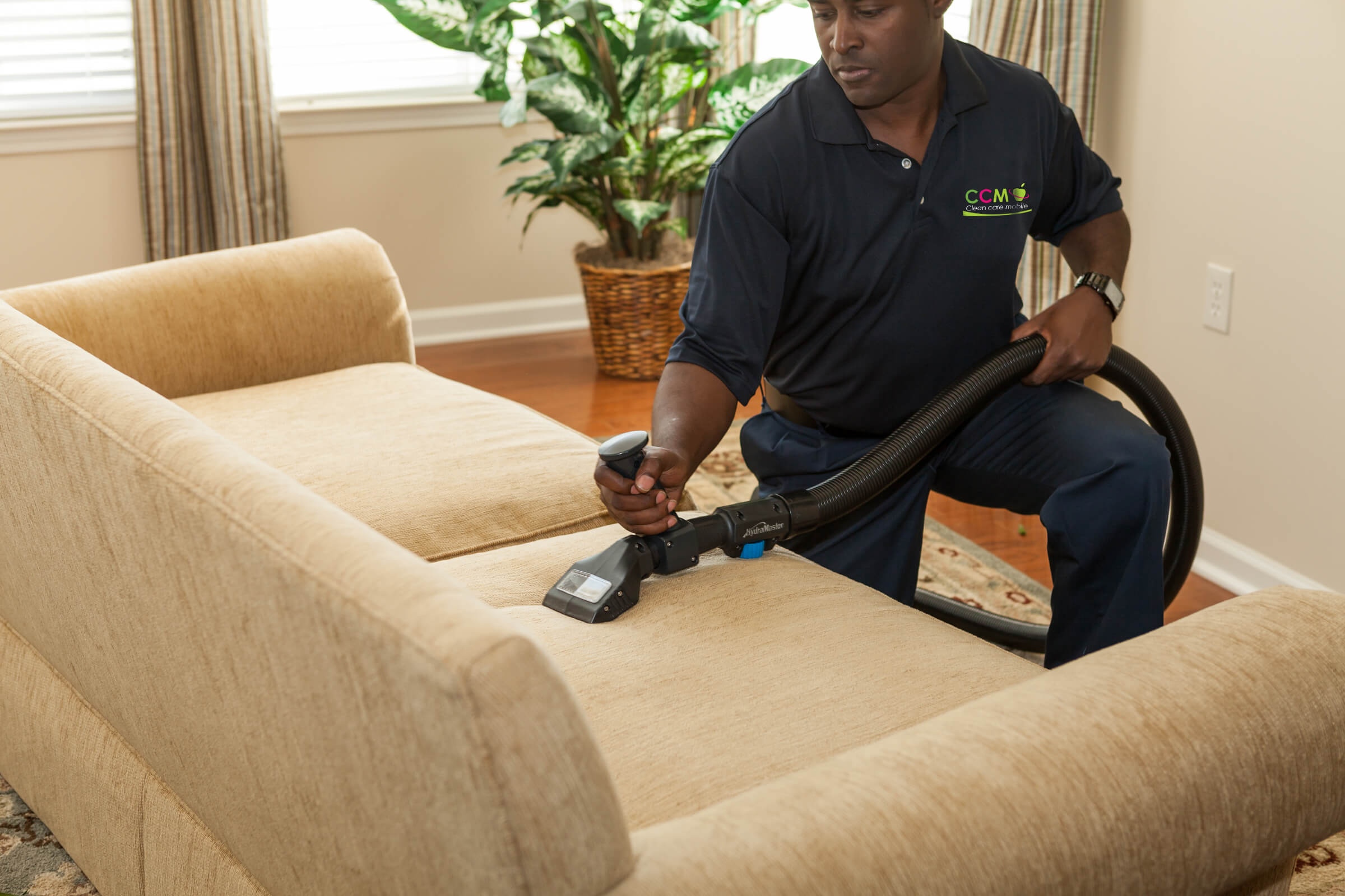 sofa cleaner chair sleeper upholstery cleaning service clean care mobile