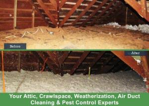 before and after crawlspace cleaning