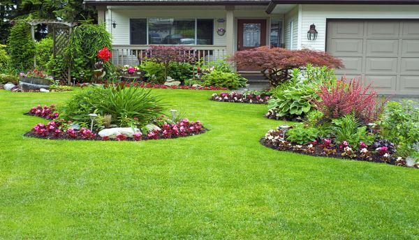 landscaping fertilization irrigation