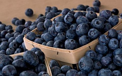blueberry walnut smoothie
