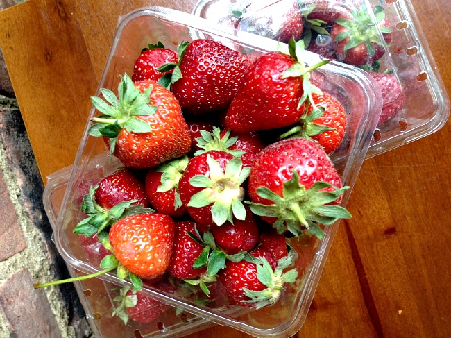 Strawberries Bird's Eye View