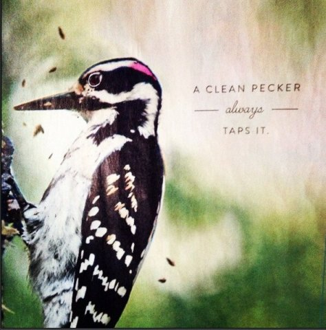 Clean Pecker