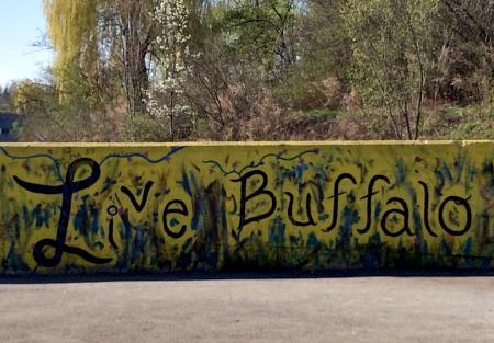 Live Buffalo