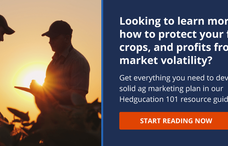 Top Tips to Sow the Seeds of Grain Trading Success