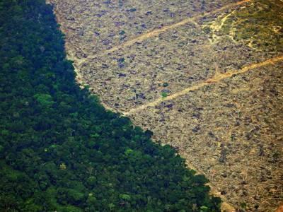 Humans are drying up the Amazon rainforest