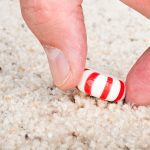 Carpet cleaning methods: quick reference guide