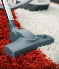 7 Best Vacuums for High Pile Carpet (shag, frieze) 2018 ...