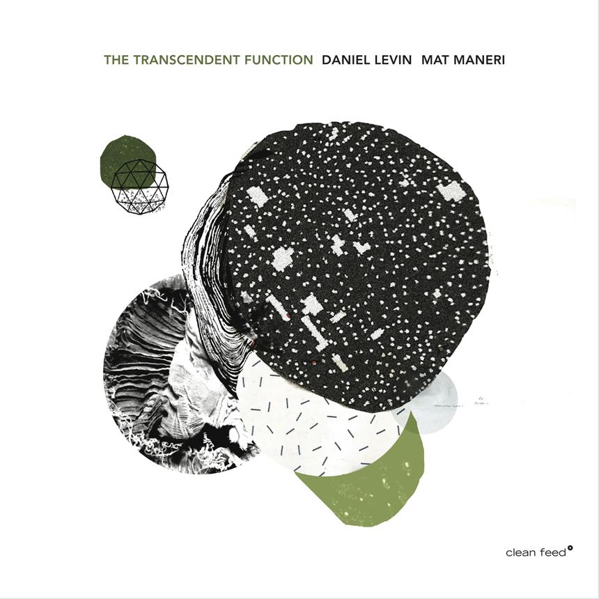 Le Son du Grisli – Daniel Levin   Mat Maneri – The Transcendent Function