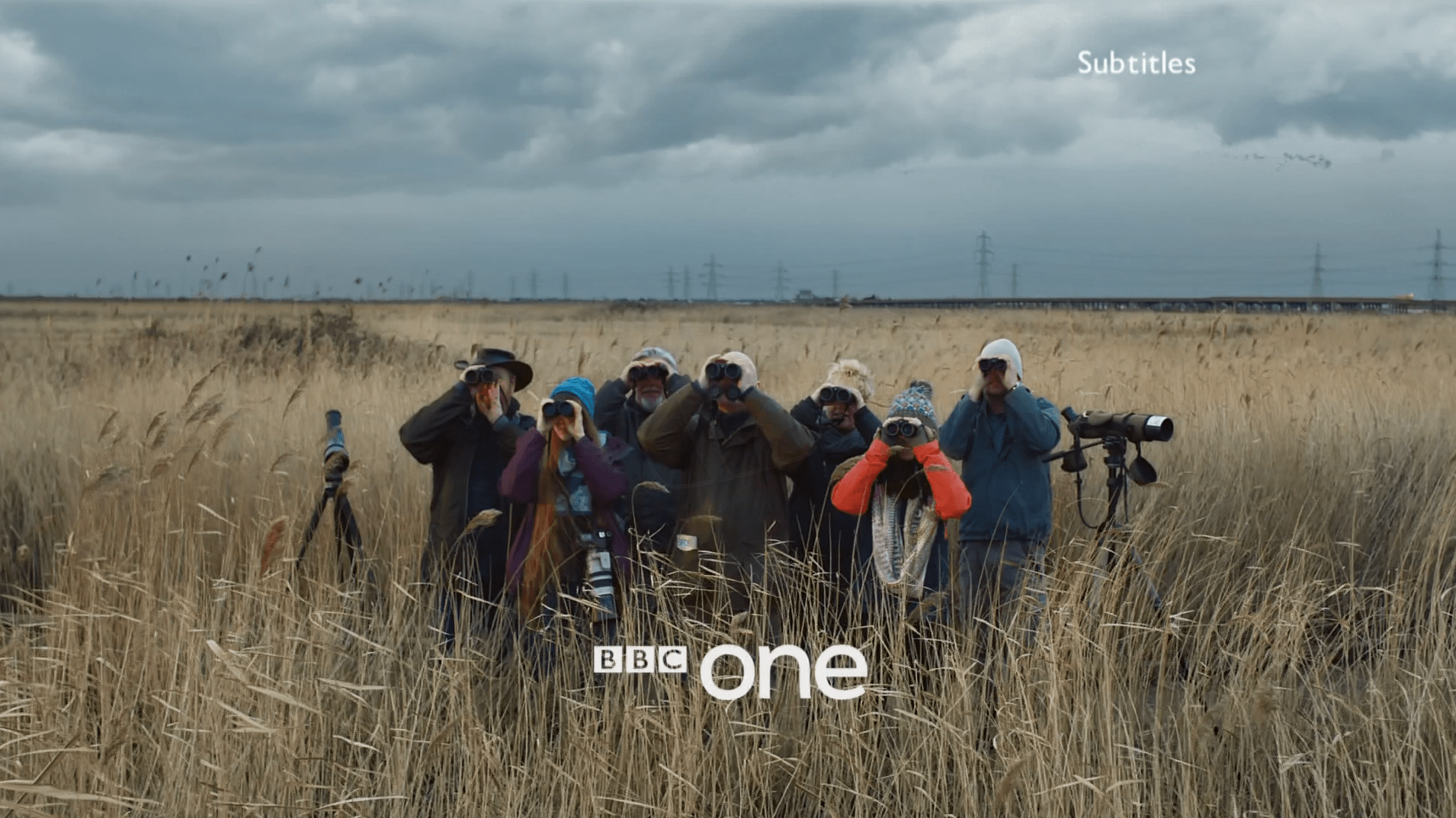 PICTURED: BBC One ident - Birdwatchers, Rainham Marshes - Version 1.