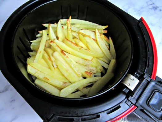 Partially cooked Air Fryer French Fries