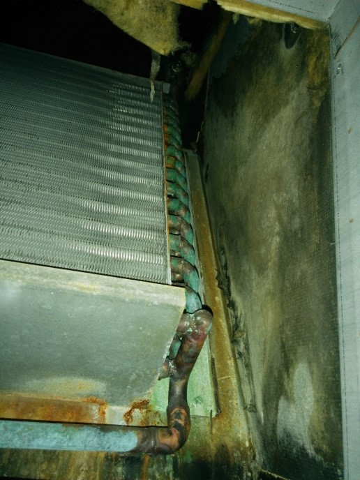 Fan Coil Unit Mold Remediation  CleanFirst Restoration