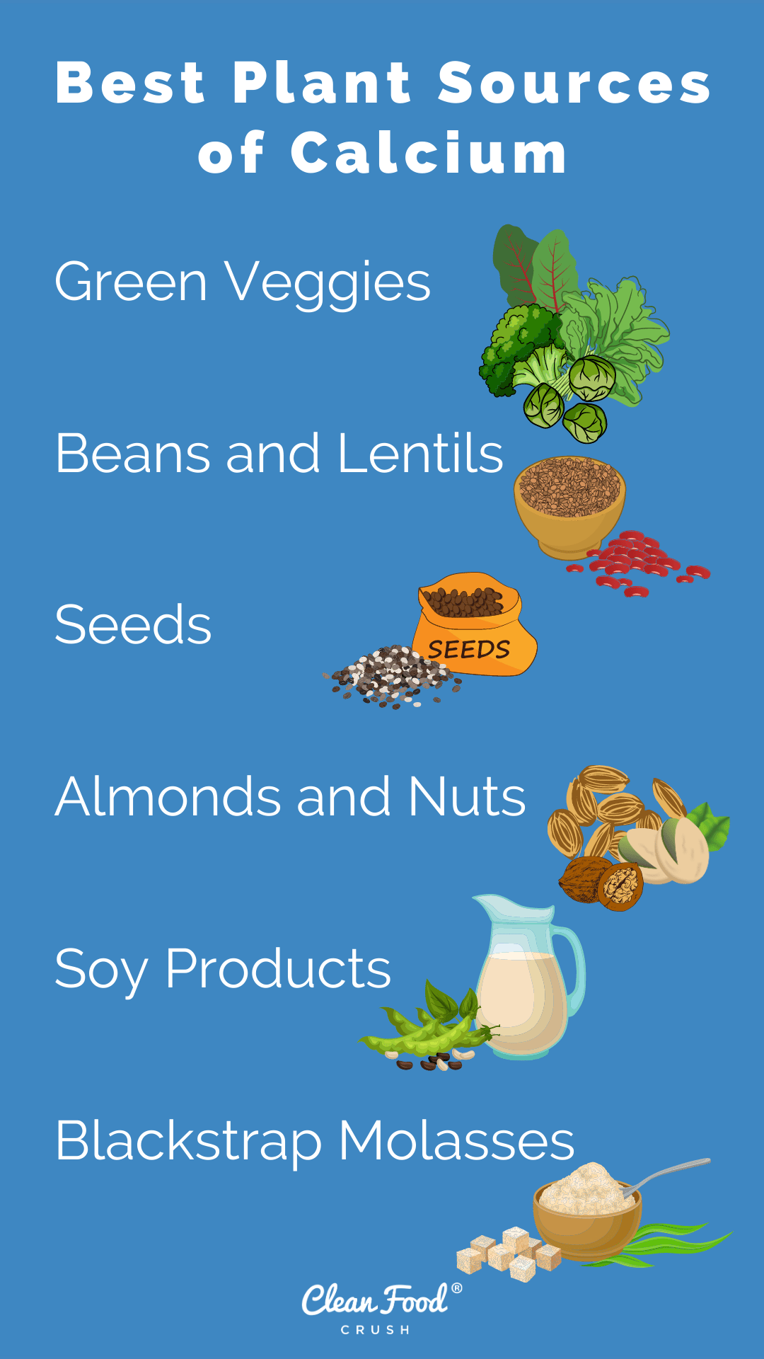 The Best Plant Sources of Calcium – The Cookbook Network