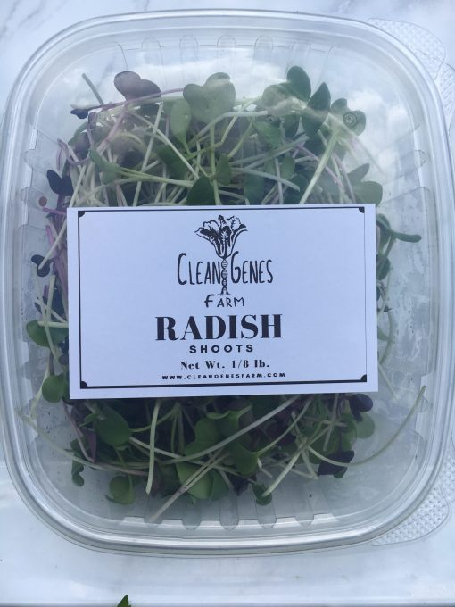 Clean Genes Farm Radish Shoots