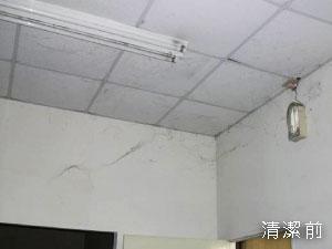 臺中清潔公司-立任清潔,地毯清洗 ...