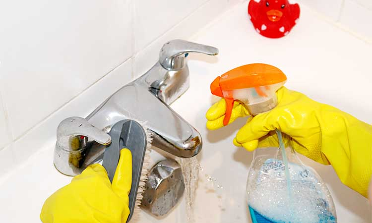 Cleaning service for house in ChicagoRiver Grove