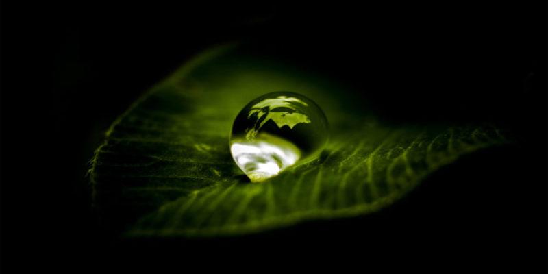waterdruppel op een blad als voorbeeld voor nanocoating