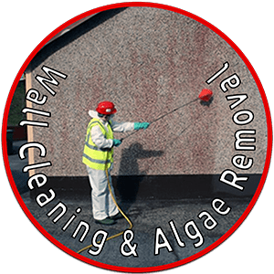 Cleaning Doctor Wall Cleaning Service
