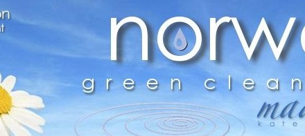 30 Days of the Norwex Enviro Cloth