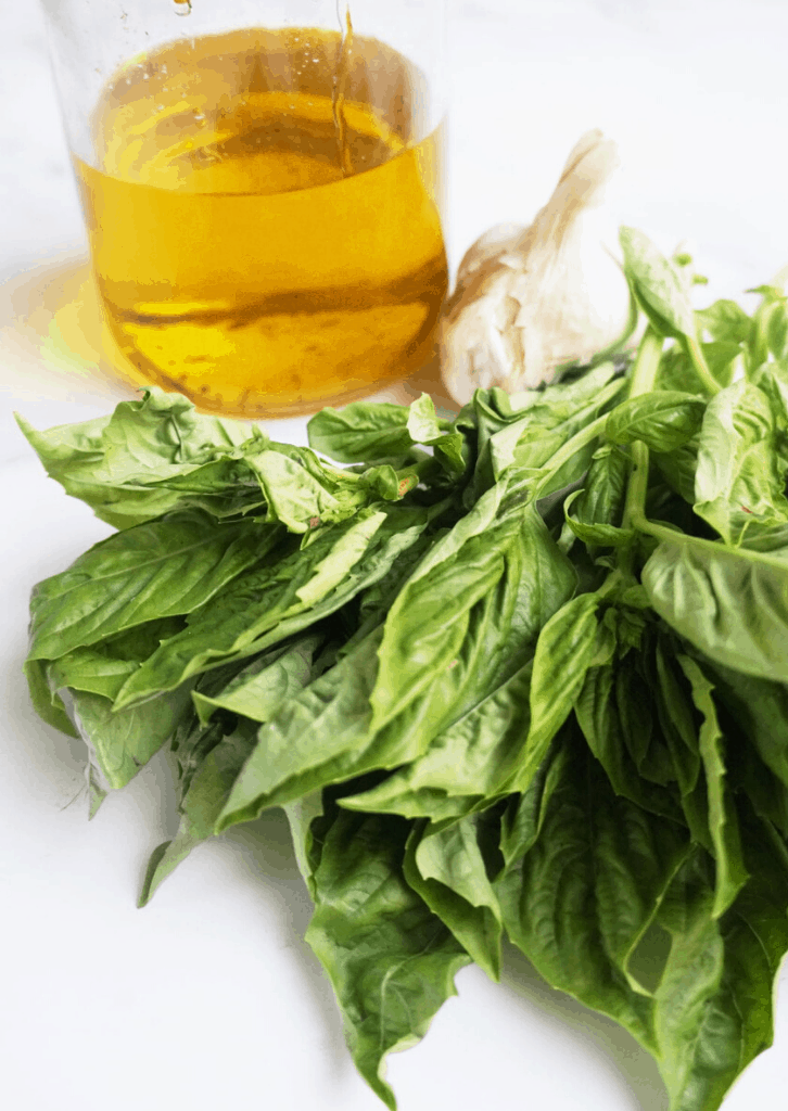 basil leaves, garlic bulb, and olive oil