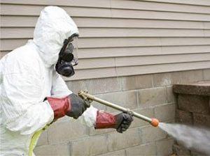 شركة مكافحة حشرات بالدمام شركة مكافحة حشرات بالدمام شركة مكافحة حشرات بالدمام 0531390740 Anti insect Companys in Dammam 300x224