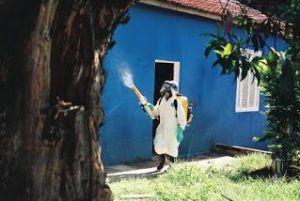 شركة مكافحة حشرات بالبقيق شركة مكافحة حشرات بالبقيق شركة مكافحة حشرات بالبقيق 0503152005 Combating insects Babakiq Companys 300x201