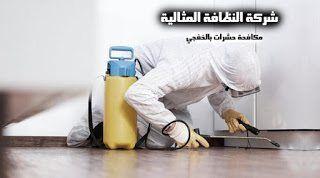 شركة رش حشرات بالخفجي شركة مكافحة حشرات بالخفجي شركة مكافحة حشرات بالخفجي 0500389452 Combating insects Khafji Company