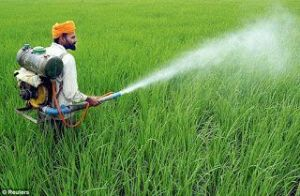 شركة رش مبيدات بالدمام شركة رش مبيدات بالدمام شركة رش مبيدات بالدمام 0531390740 Pesticide spraying Companys in Dammam 300x196