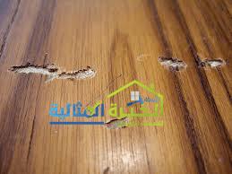 شركة مكافحة النمل الابيض براس تنورة شركة مكافحة النمل الابيض براس تنورة شركة مكافحة النمل الابيض براس تنورة  0531390740 ghghgf
