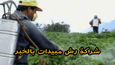 شركة رش مبيدات بالخبر  شركة رش مبيدات بالخبر 0531390740 img1498913463967