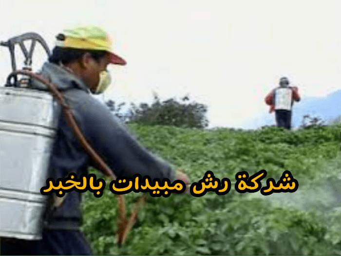 شركة رش مبيدات بالخبر 0503152005