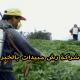 شركة رش مبيدات بالخبر شركة كشف تسربات المياه بالخبر 0503152005 img1498913463967