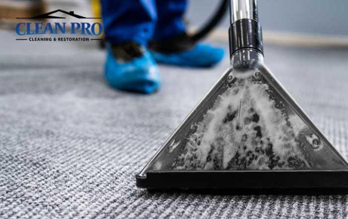 Carpet Spots Reappear