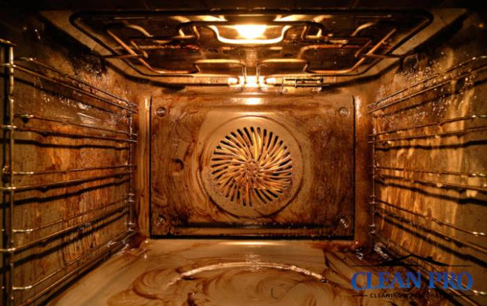 Clean Pro How to Clean Your Oven