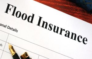 is-flood-insurance-really-worth-the-investment